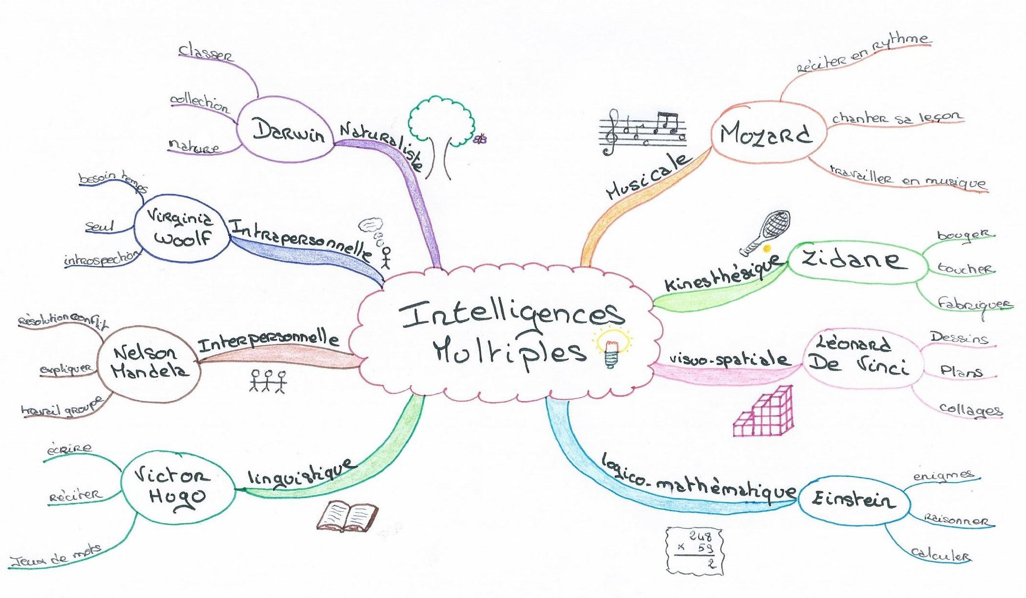 Qu'est ce que l'on entend par intelligences multiples ?